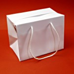 Buste Bag-Box